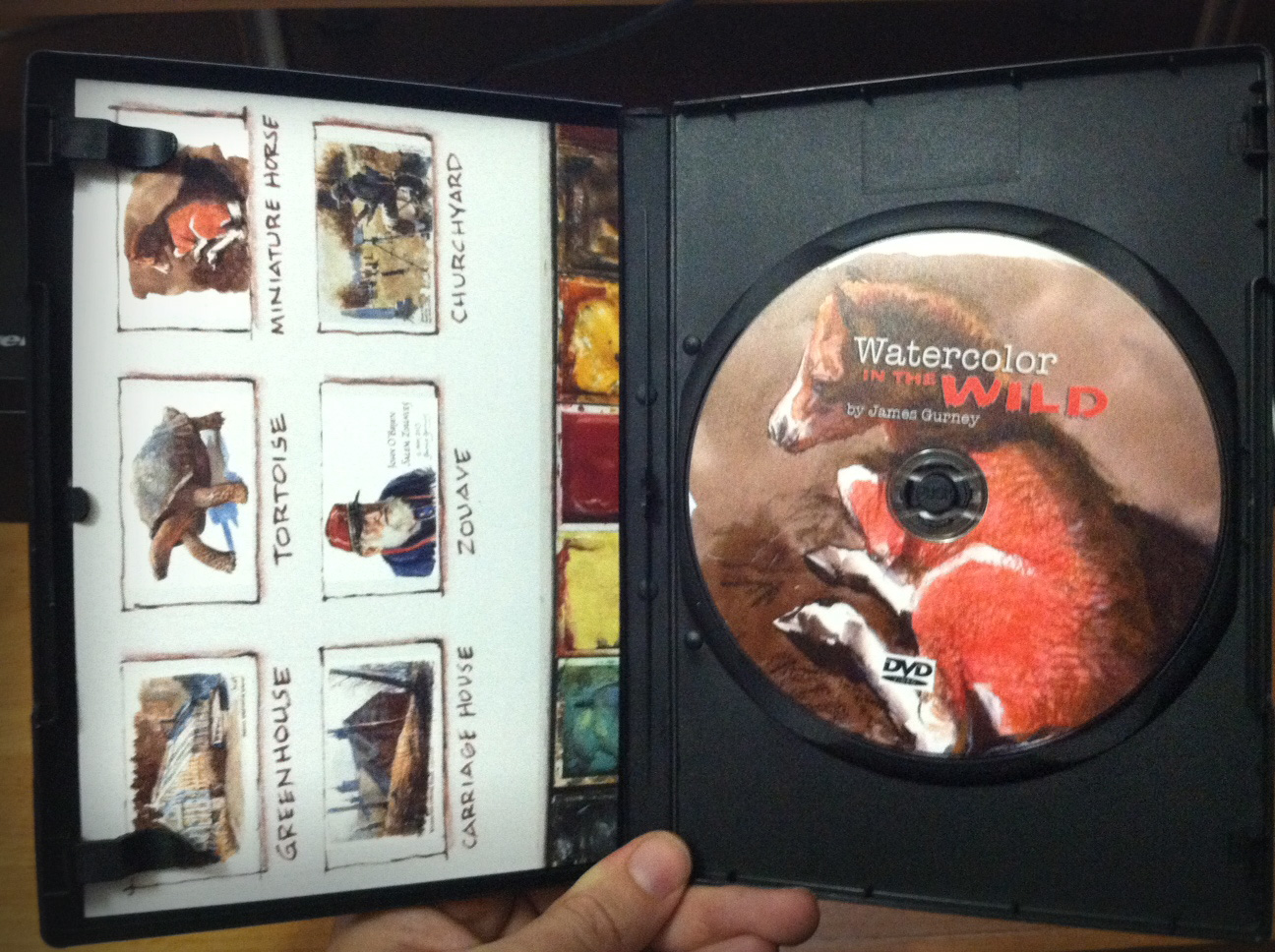 DVD Review: Watercolor in the Wild