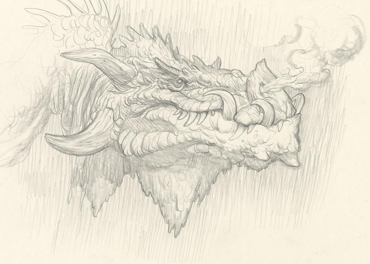 A Dragon Study