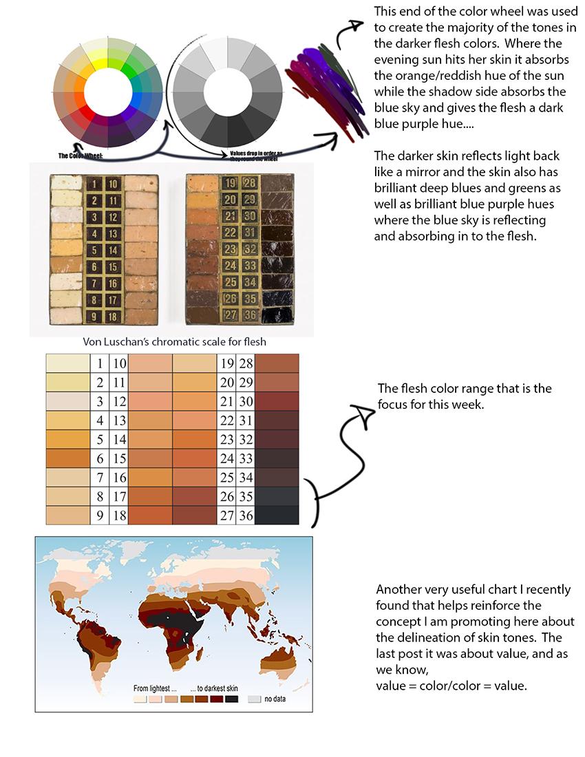 Skin Tone : Lesson 1