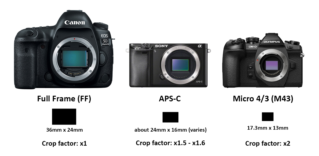Unconfusing Digital Photography Part 1: Sensor Sizes and Focal ...