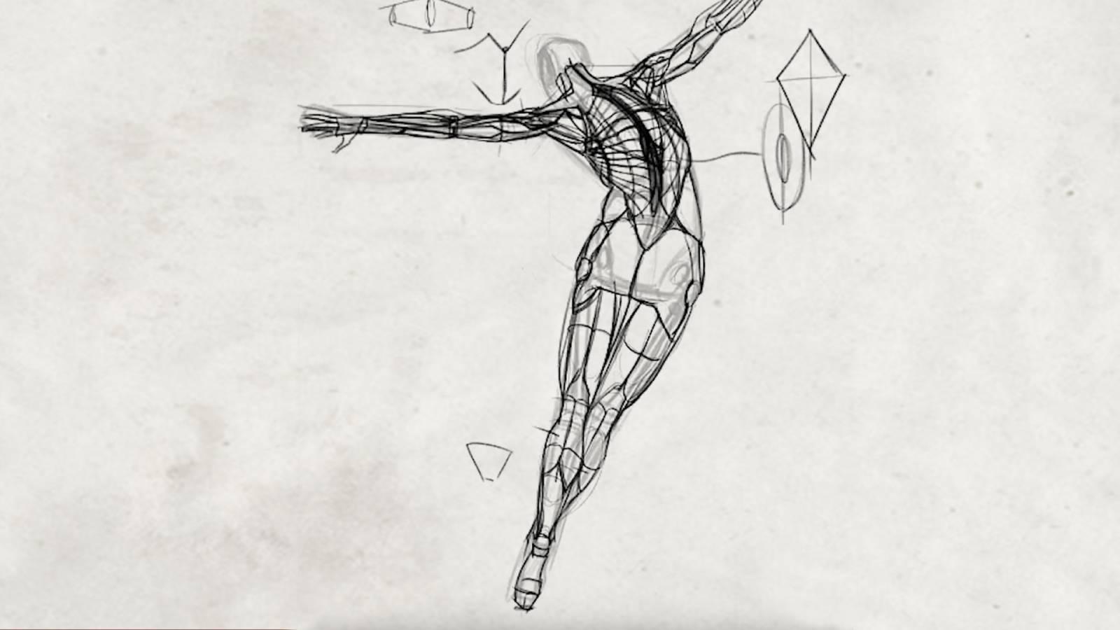 Constructing the Human Figure