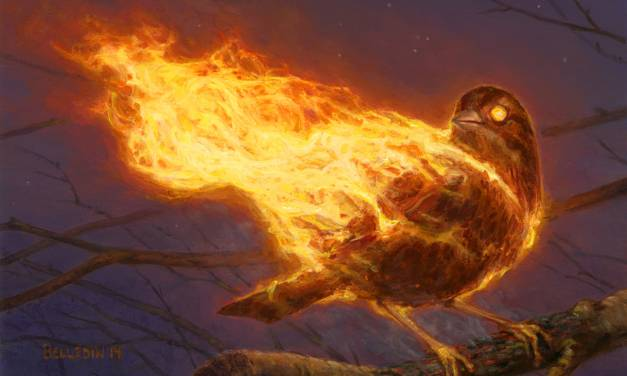 Of Flaming Birds and Personal Work