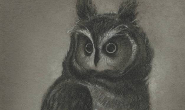 And More Toned Paper Drawings